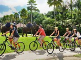 バリアドベンチャー サイクリング
