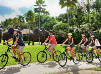bali adventure cycling