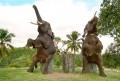 ayung river elephant camp