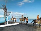 東部サバビーチ ホースライド