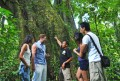 Bali Adventure Trekking
