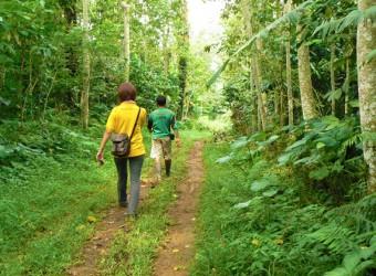 paddy adventure trekking