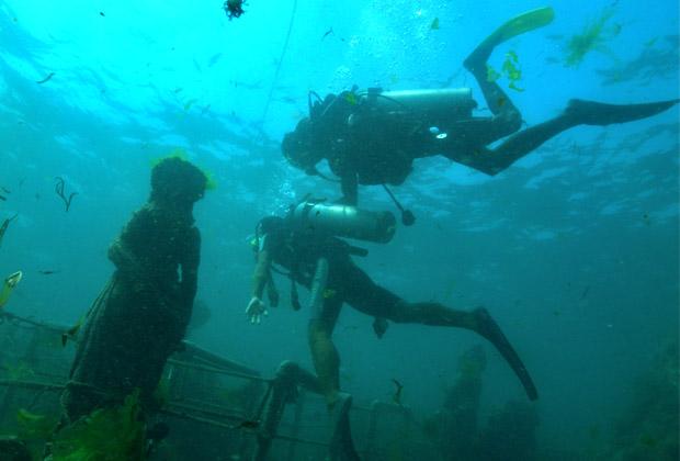 バリドルフィン社 体験ダイビング