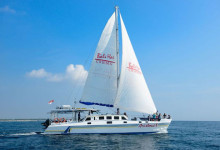 hi-cruise-aristcat