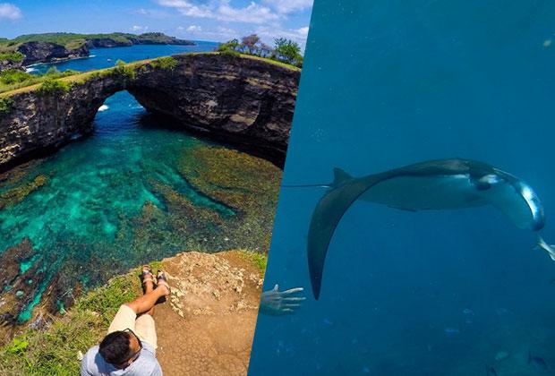 hi-green-manta-island