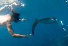 hi-manta-snorkel