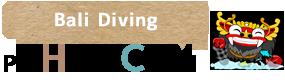 バリ島 ダイビング ツアー | 口コミ、人気ランキング、徹底比較で選べる | 家族旅行はPT ヒロチャン