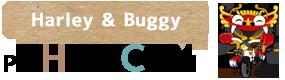 ハーレー & バギー ツーリングでバリ島 観光 ツアー | 口コミ、人気ランキング | 家族旅行はPT ヒロチャン