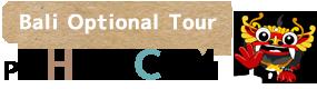 バリ島 オプショナル ツアー | 観光  口コミ、人気ランキング、徹底比較で選べる | 家族旅行はPT ヒロチャン