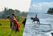bali zoo trekking + horse ride