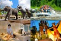 Elephant Park + Balinese Dance Tour