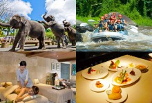 elephant park full day tour