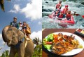 elephant safari + rafting + dinner