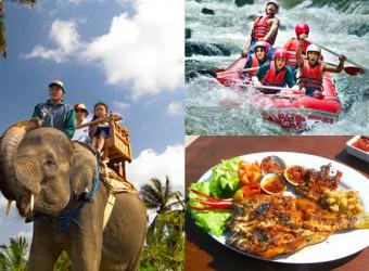 elephant safari + rafting + dinner
