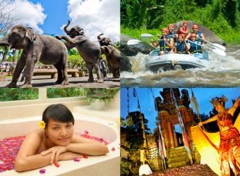 elephant safari + rafting + spa + dance b