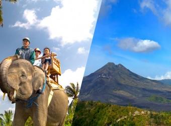 elephant safari + sightseeing