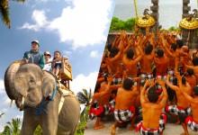 elephant safari + uluwatu temple