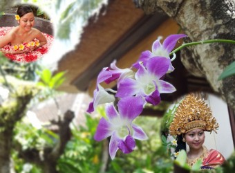 bali orchid spa